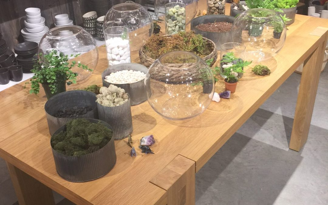 SYG Designs' Terrarium Workshop at West Elm Charleston